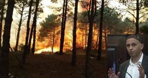 incendios-pinamar